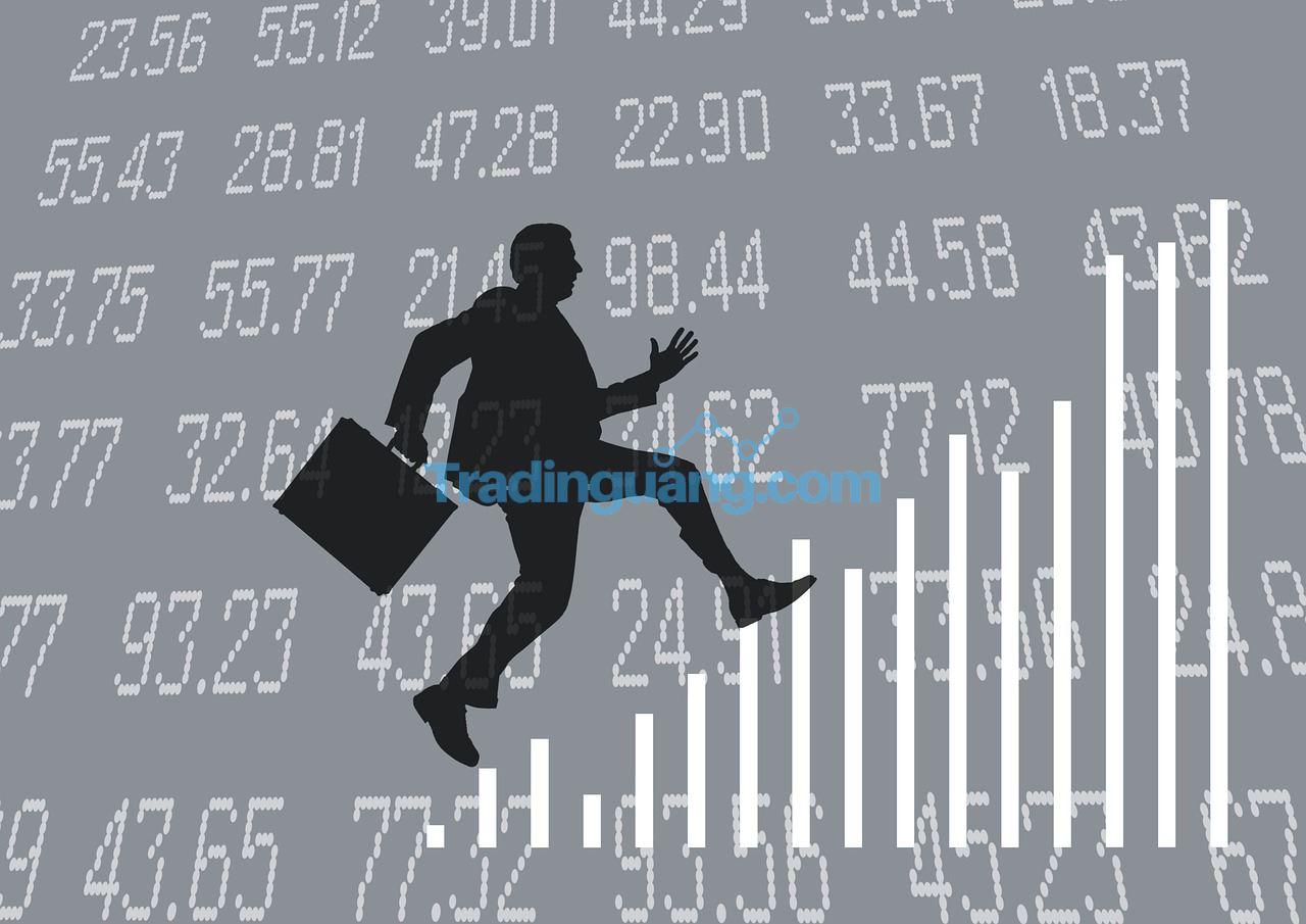 Cara Menjalankan Strategi Trading Forex tanpa Loss dan Keuntungannya
