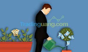 Strategi-Scalping-Dalam-Trading-Forex
