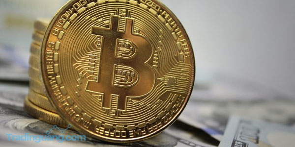 Identitas Satoshi Nakamoto Pembuat Bitcoin Akhirnya Terungkap