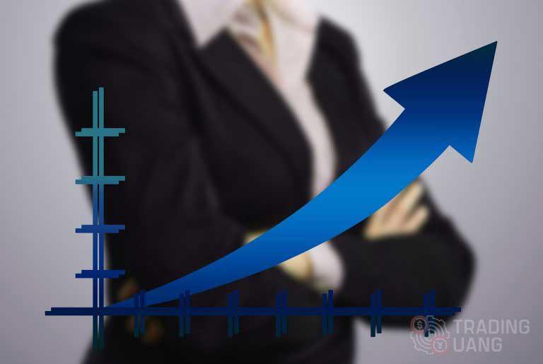 Inilah Tips dan Cara Trading Binary Digit Pasti Profit