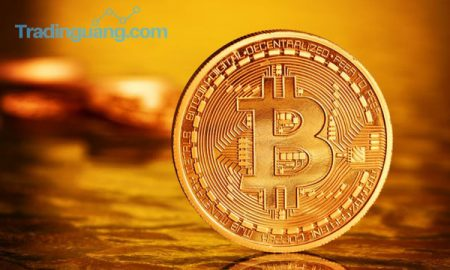 Investor Bitcoin Untung Rp 5,2 Juta Semalam!