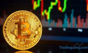 Benarkah setelah 17 Mei Harga Bitcoin Akan Melesat Seperti Emas?