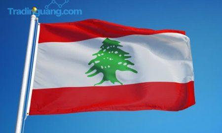 Lebanon Demo Rusuh Akibat Mata Uang Melemah