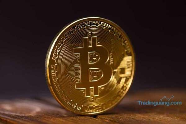 Wow, Dalam Semalam Trader Bitcoin Raup Untung Rp 7 Juta/Koin!