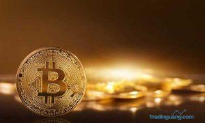 Investor Bitcoin Rugi Rp 21 Jutaan Dalam Semalam