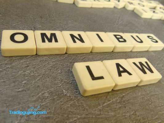 Lembaga Asing Puji Undang-Undang Cipta Kerja Indonesia