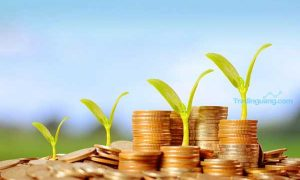 Jangan Lagi Takut Berinvestasi, Berikut Tips Main Saham Untuk Pemula