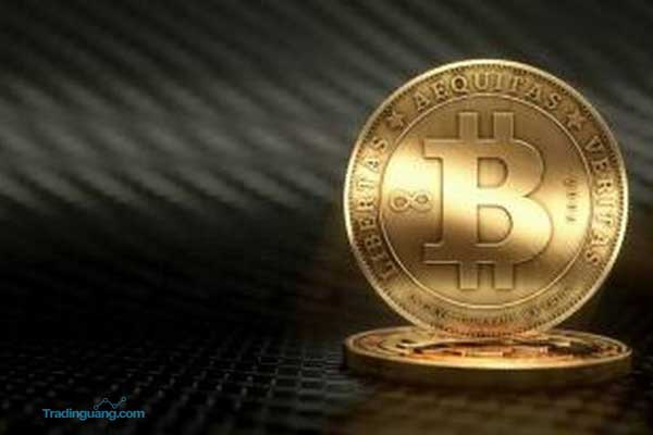 Melambung di Atas US$ 20.000, Bitcoin Jadi Incaran Investor Awam?