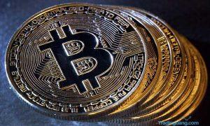 Harga Bitcoin Semakin Meroket dan Tak Terkendali