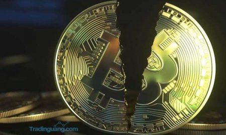 Harga Bitcoin Terus Menguat, Mungkinkah Akan Anjlok Seperti 2018 Silam?