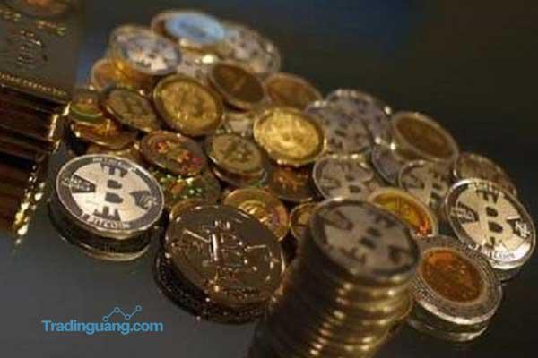 Tak Hanya Bitcoin, Mata Uang Digital yang Lain Juga Terkerek Naik