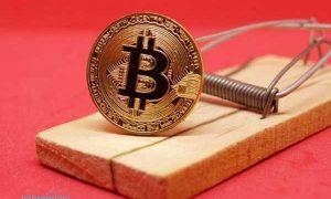 Meski Ethereum Sempat Naik Tinggi, Namun Bitcoin Tetap Buat Orang Tergila-gila
