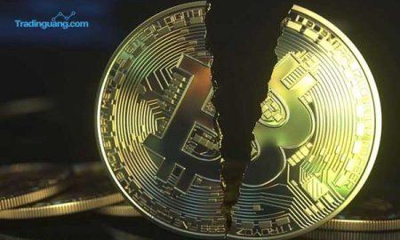 Bitcoin Disebut Gelembung Spekulatif