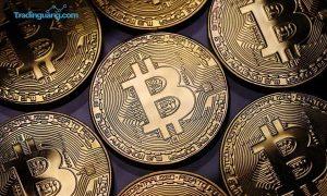 India Berencana Larang Bitcoin, Pemilik dan Penambang Akan Didenda