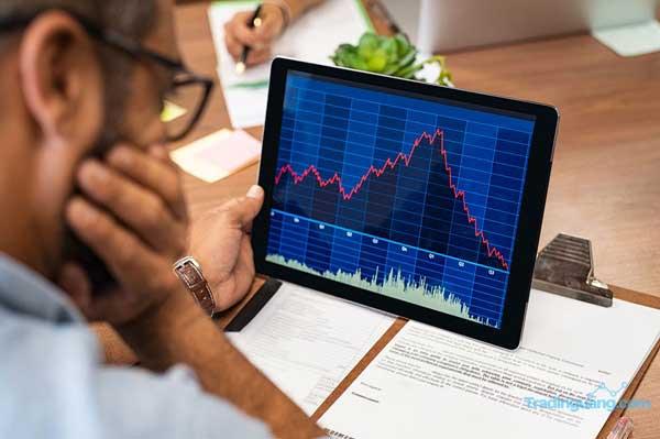 Stop Loss pada Trading Forex: Definisi, Jenis, dan Fungsinya