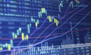 Mengapa Terlalu Lama Belajar Trading di Akun Demo Justru Berisiko?