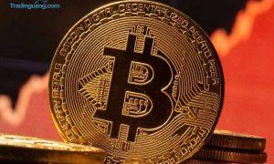 Semakin Perkasa, Bitcoin Diramal Tembus Rp 5,8 Miliar di Akhir 2021