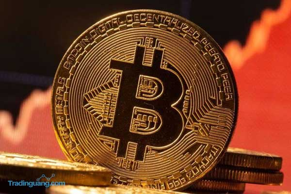 Mata Uang Kripto Diambang Bubble?
