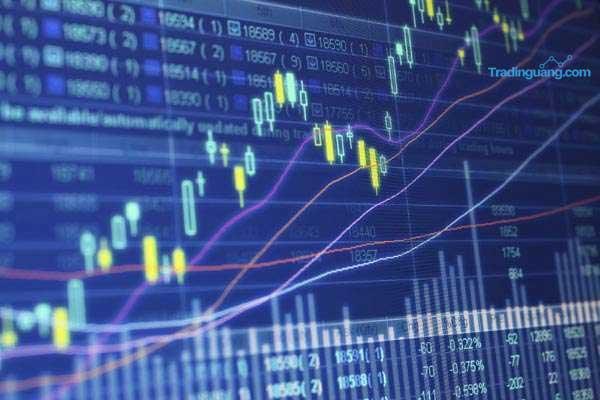 Apa Itu Hammer dan Hanging Man pada Trading Forex?