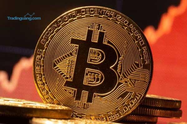 Hukum Halal Haram Cryptocurrency
