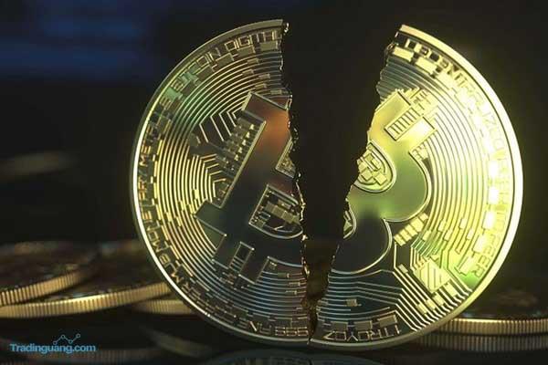 Banyak Anak Muda Korea Terjerat Hutang Karena Investasi Kripto