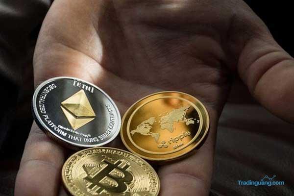 Panduan Penting Memahami Seluk Beluk Trading Crypto