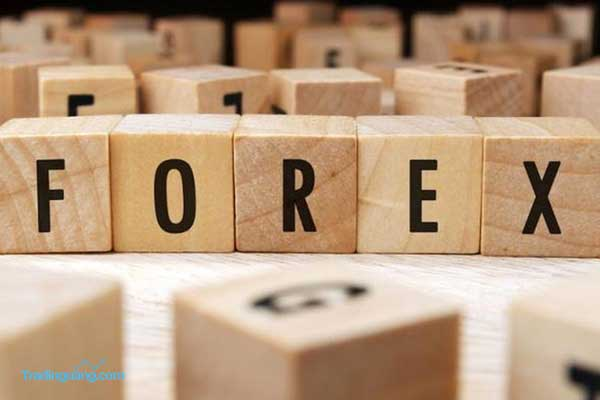 Memahami Strategi Follow Trend dan Counter Trend pada Forex