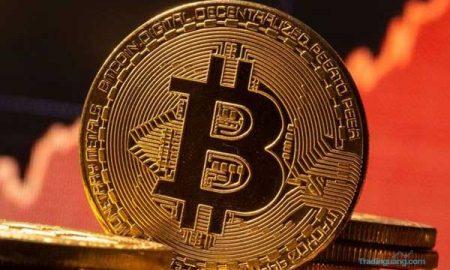 Ukraina Susul El Savador Legalkan Bitcoin