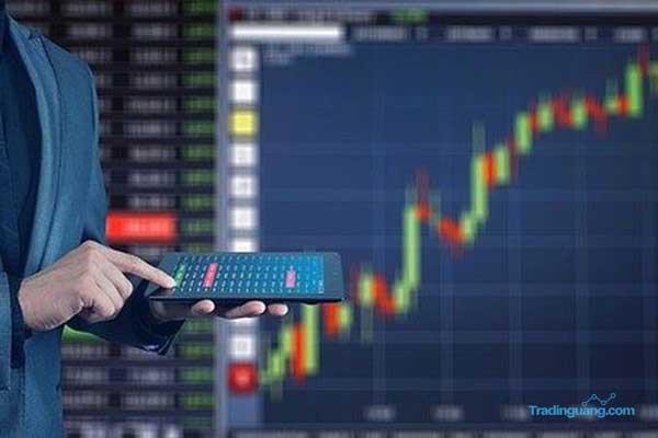 Cara Menggunakan Indikator Williams Percent Range pada Trading Forex