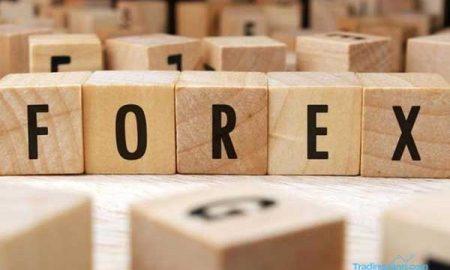 Pengertian Fractal dan Fungsinya pada Trading Forex