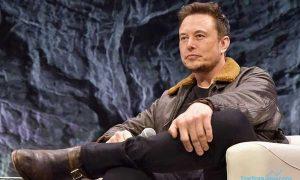 Ramai-ramai Kripto Ditindak, Elon Musk Angkat Suara